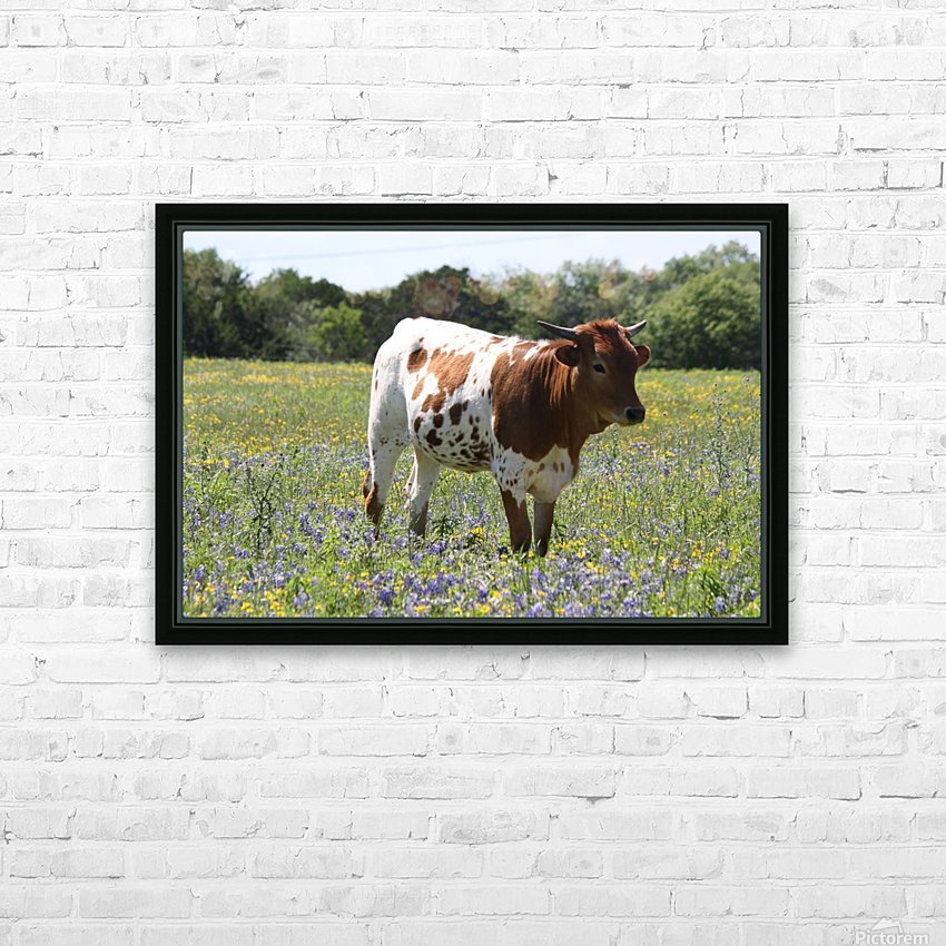 Longhorn and Bluebonnets HD Sublimation Metal print with Decorating Float Frame (BOX)