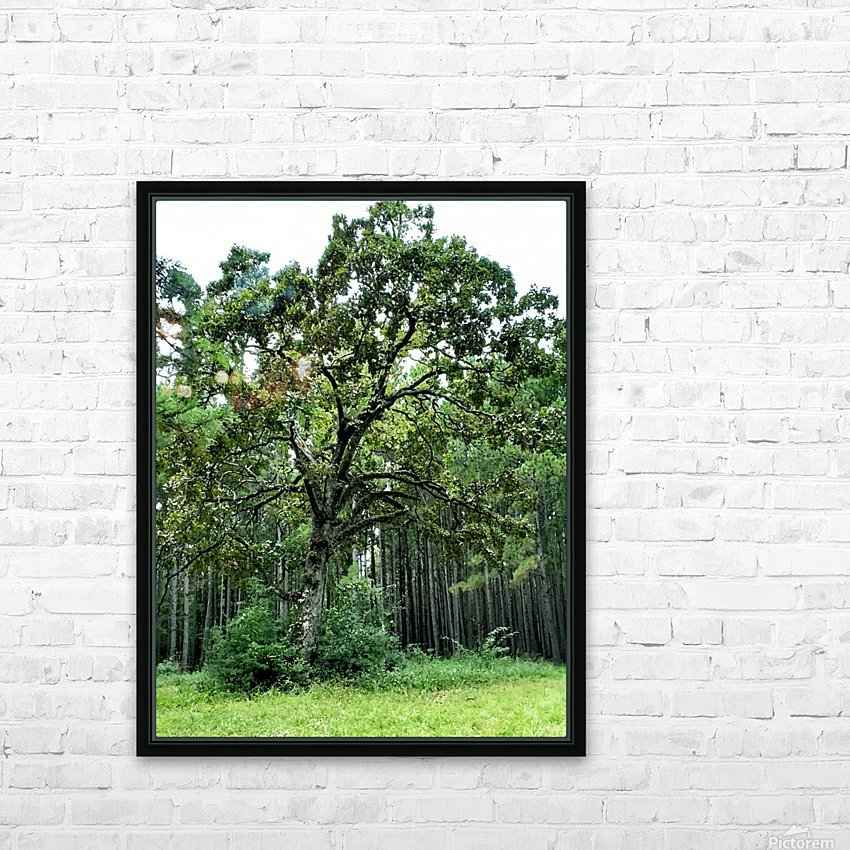 Larrys Tree HD Sublimation Metal print with Decorating Float Frame (BOX)