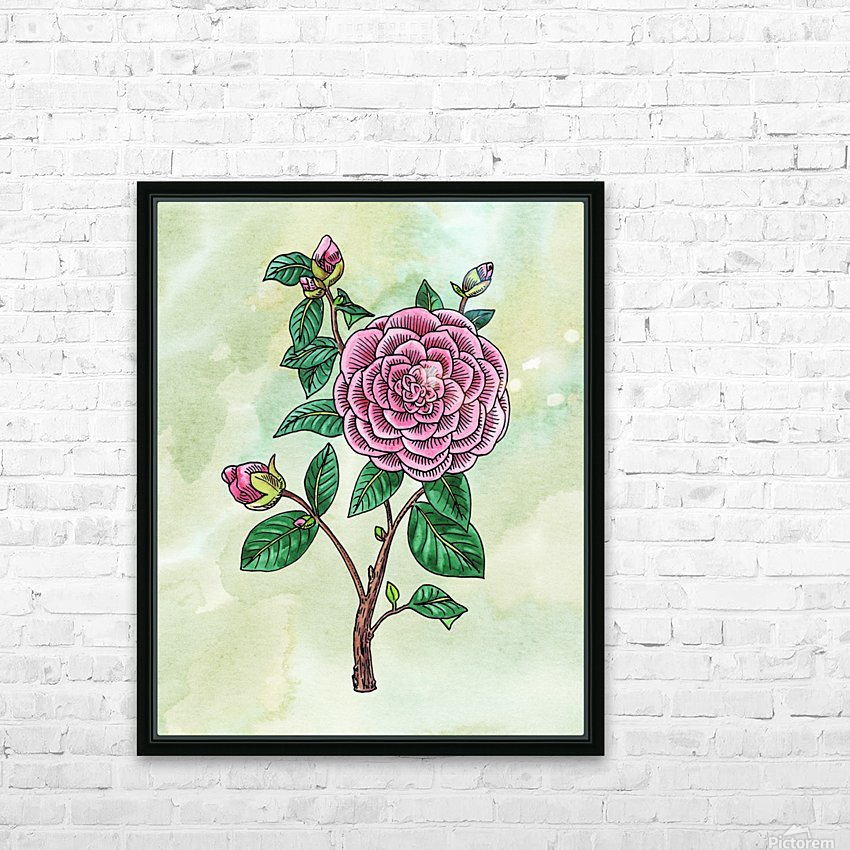 Botanical Watercolor Japanese Camellia Flower  HD Sublimation Metal print with Decorating Float Frame (BOX)