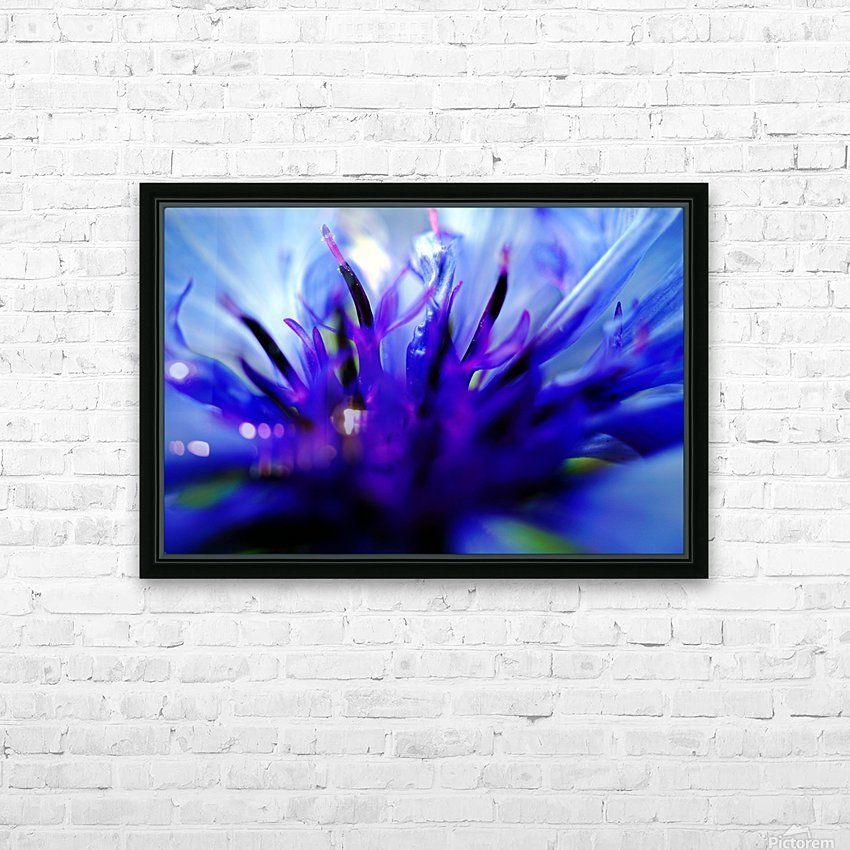 Abstract Pop Color Flower Photography 01 HD Sublimation Metal print with Decorating Float Frame (BOX)