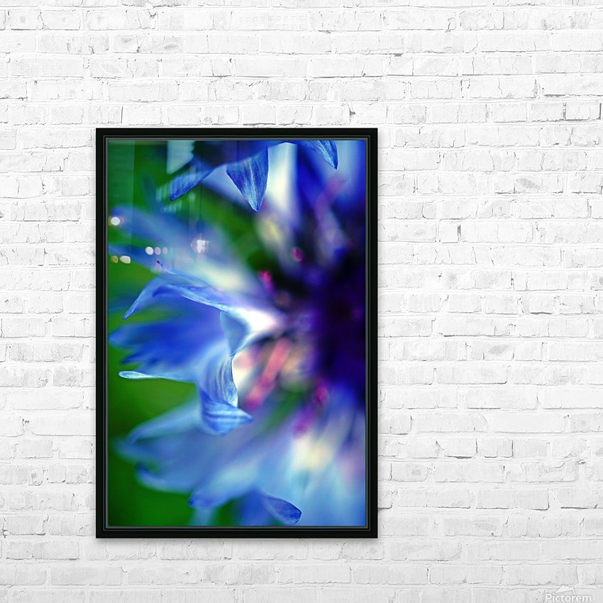 Abstract Pop Color Flower Photography 16 HD Sublimation Metal print with Decorating Float Frame (BOX)