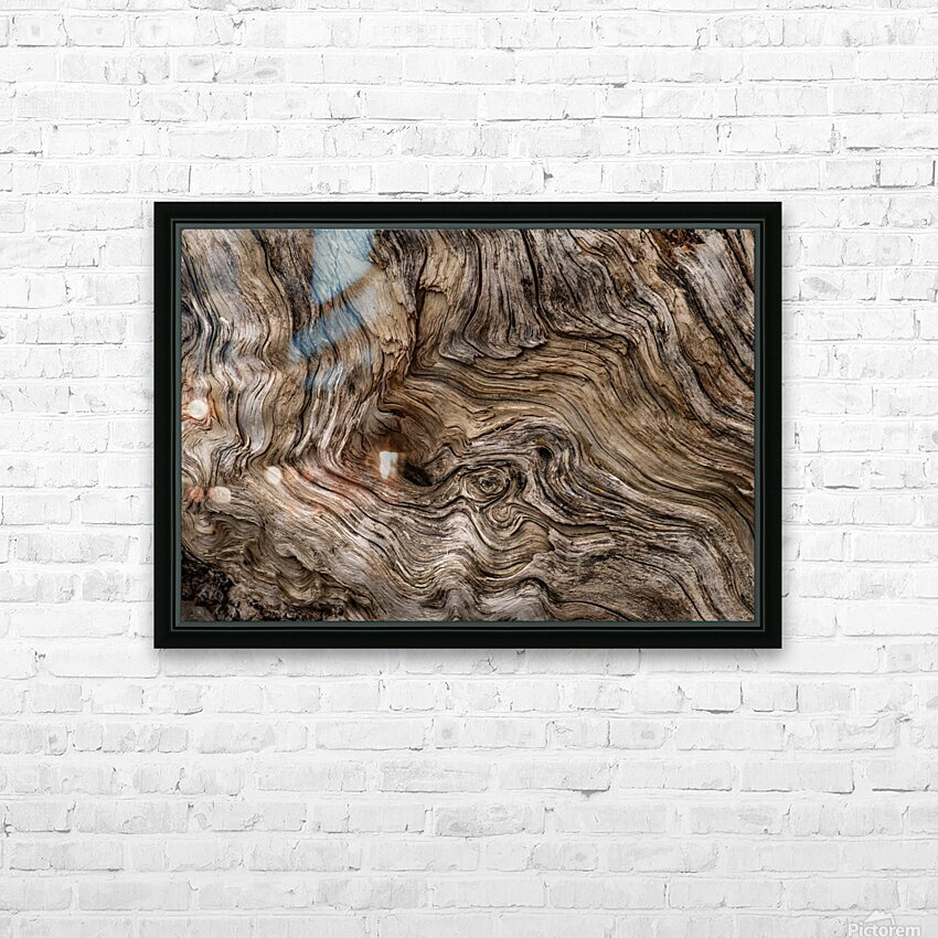 Banff Petrified Wood HD Sublimation Metal print with Decorating Float Frame (BOX)