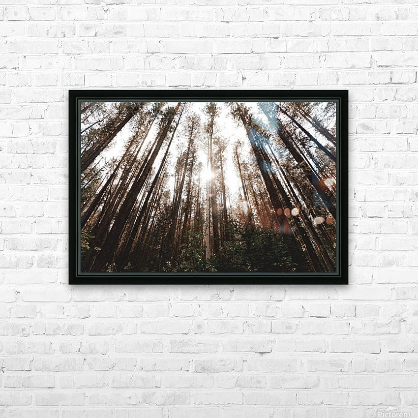 See the Sun HD Sublimation Metal print with Decorating Float Frame (BOX)