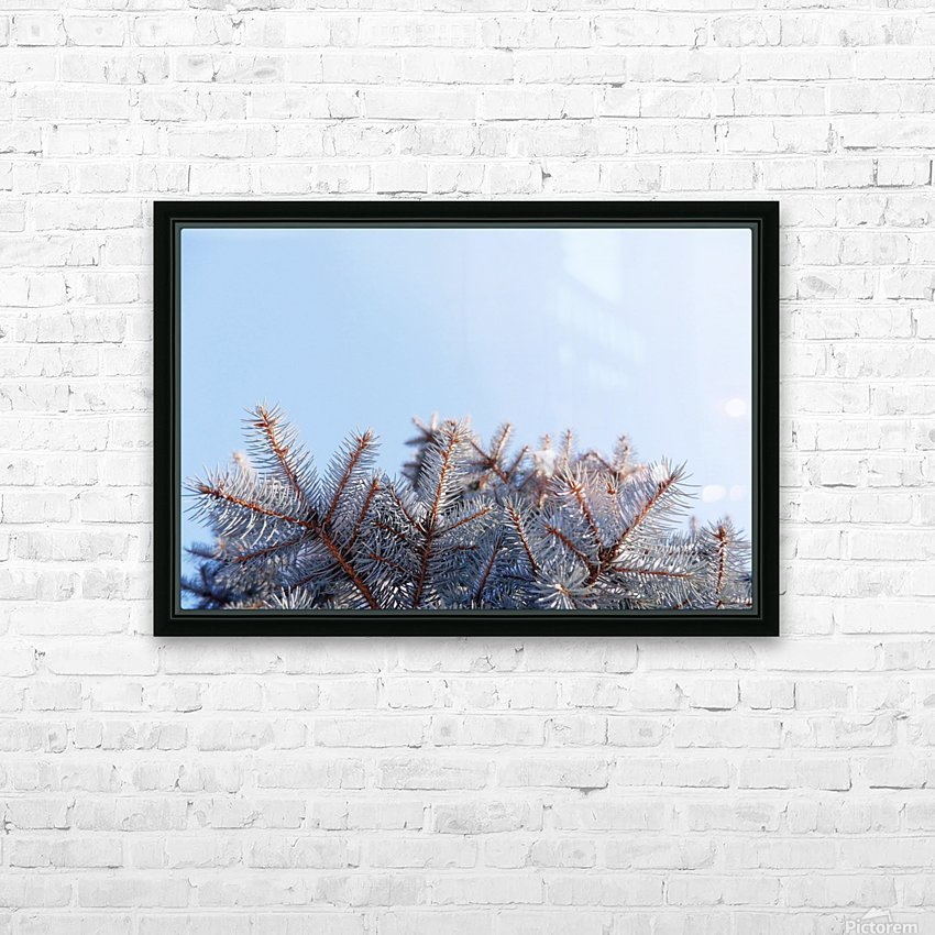 Winter Pines HD Sublimation Metal print with Decorating Float Frame (BOX)