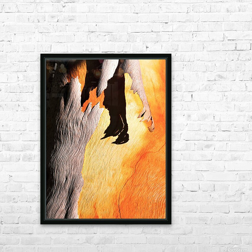 Salmon Bark Peeling HD Sublimation Metal print with Decorating Float Frame (BOX)