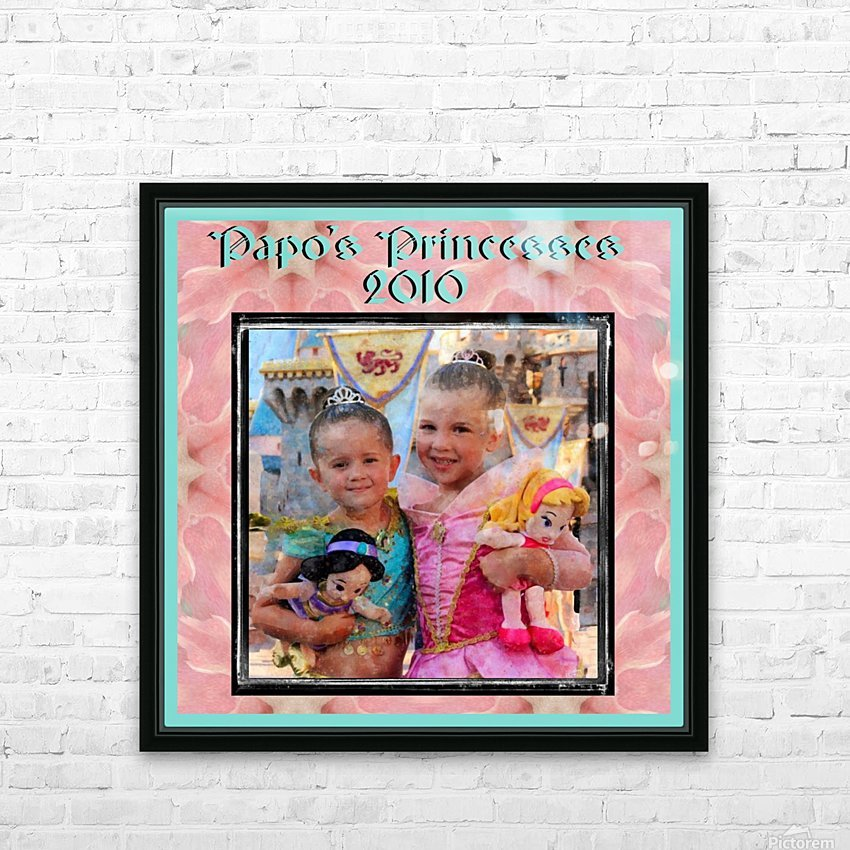 Papo's Princesses 2010 HD Sublimation Metal print with Decorating Float Frame (BOX)