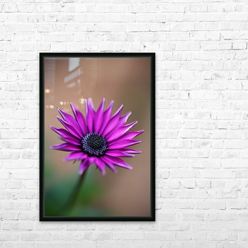 Purple Daisy HD Sublimation Metal print with Decorating Float Frame (BOX)