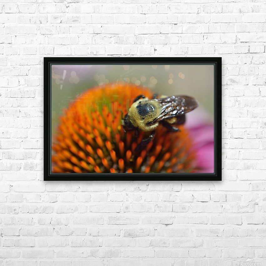 Purple Coneflower with bee HD Sublimation Metal print with Decorating Float Frame (BOX)
