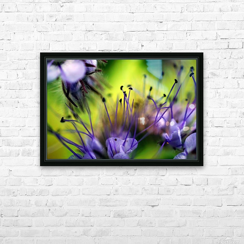 Abstract Pop Color Flower Photography 17 HD Sublimation Metal print with Decorating Float Frame (BOX)