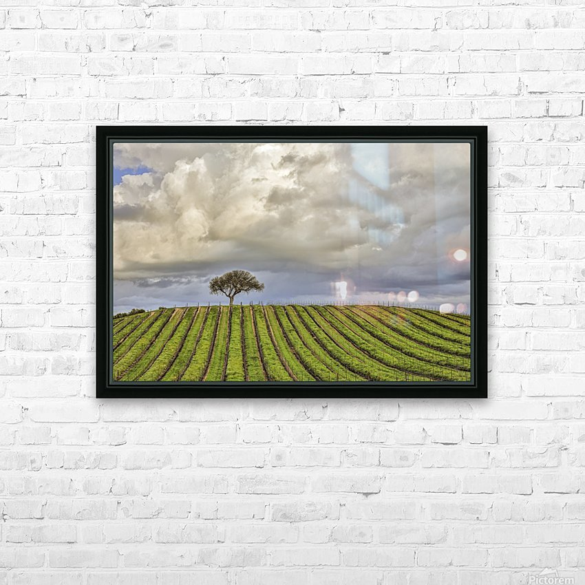 alone among the vines HD Sublimation Metal print with Decorating Float Frame (BOX)