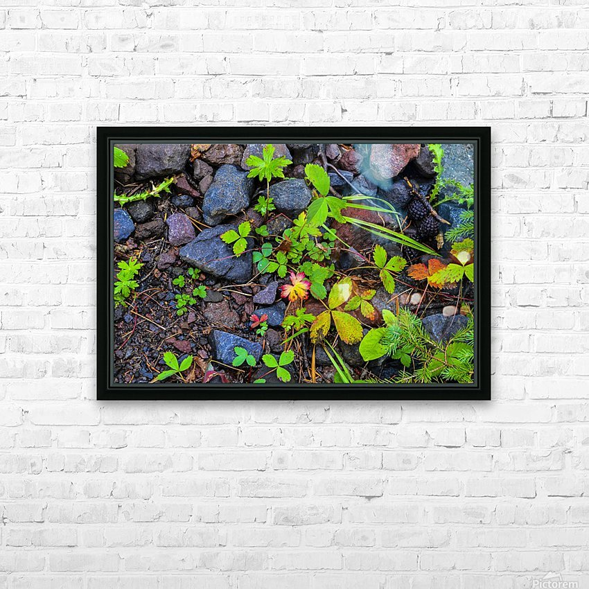 Forest floor HD Sublimation Metal print with Decorating Float Frame (BOX)
