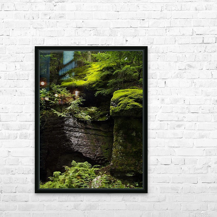 Trail of the Cedars HD Sublimation Metal print with Decorating Float Frame (BOX)
