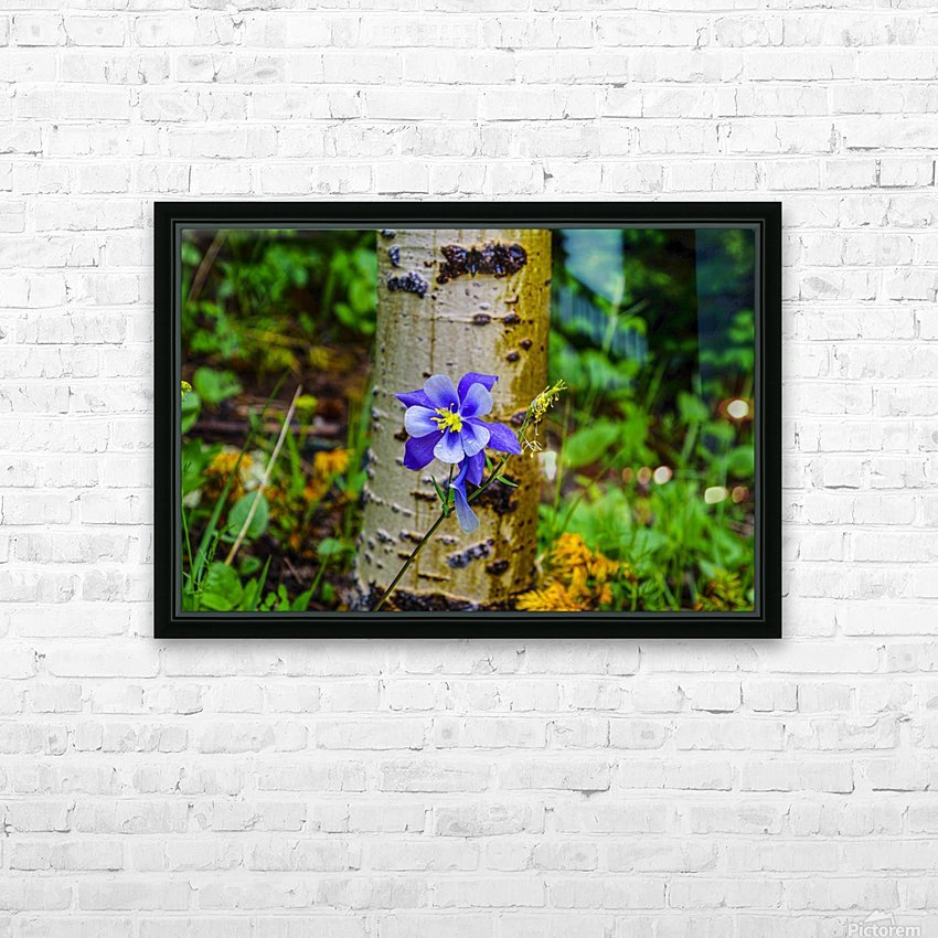 Columbine HD Sublimation Metal print with Decorating Float Frame (BOX)