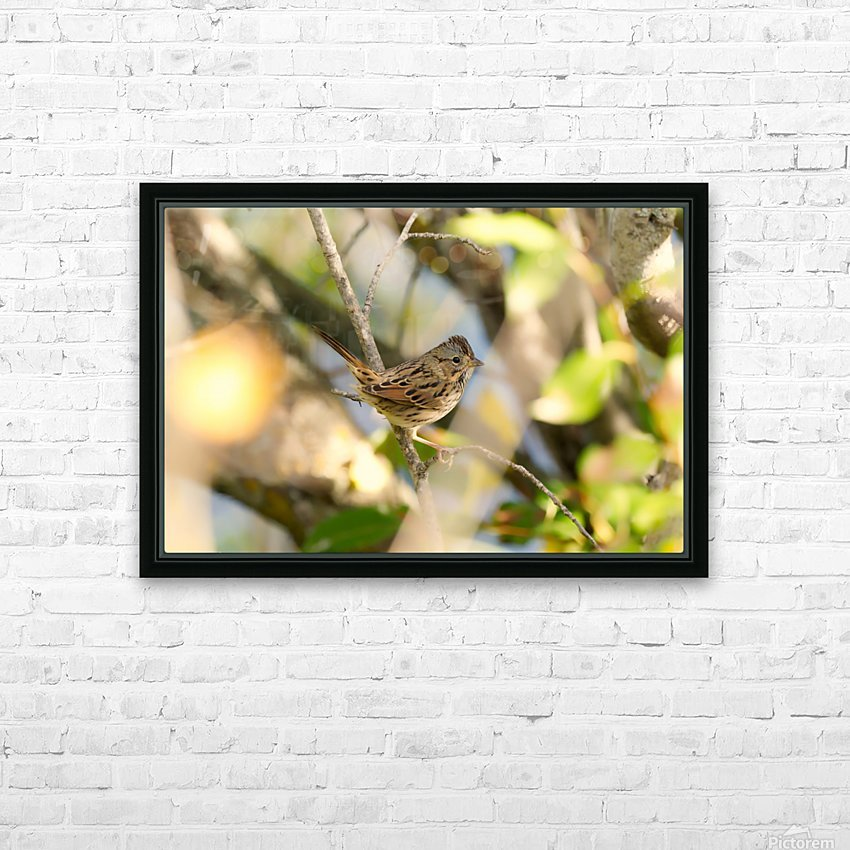 BETSY HD Sublimation Metal print with Decorating Float Frame (BOX)