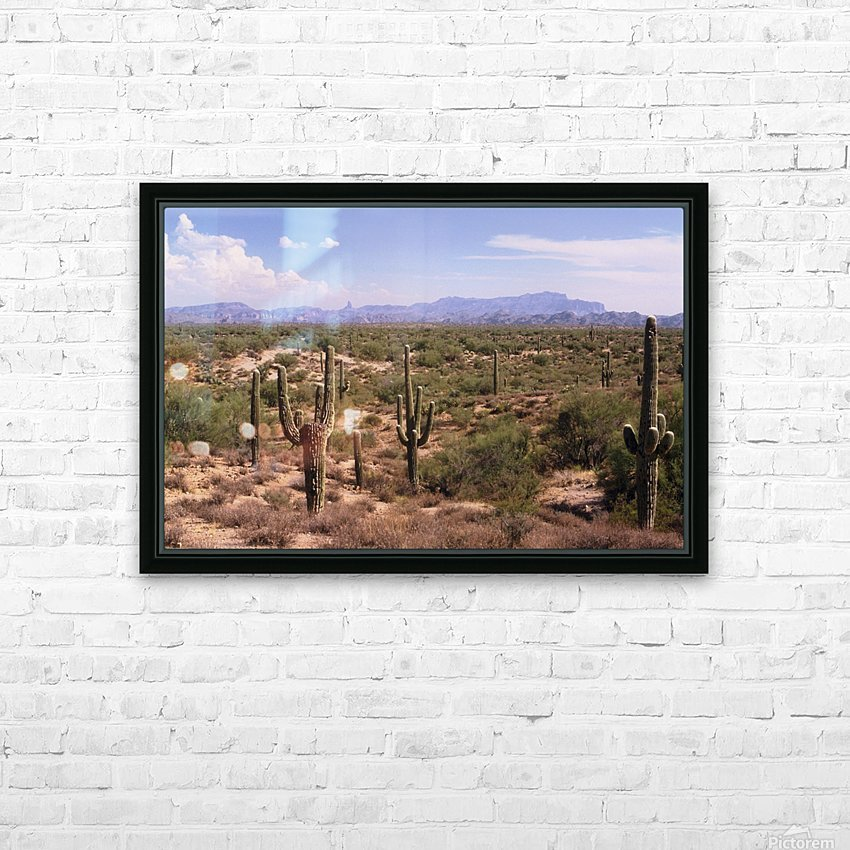 Sonora Desert Landscape Arizona Photograph HD Sublimation Metal print with Decorating Float Frame (BOX)