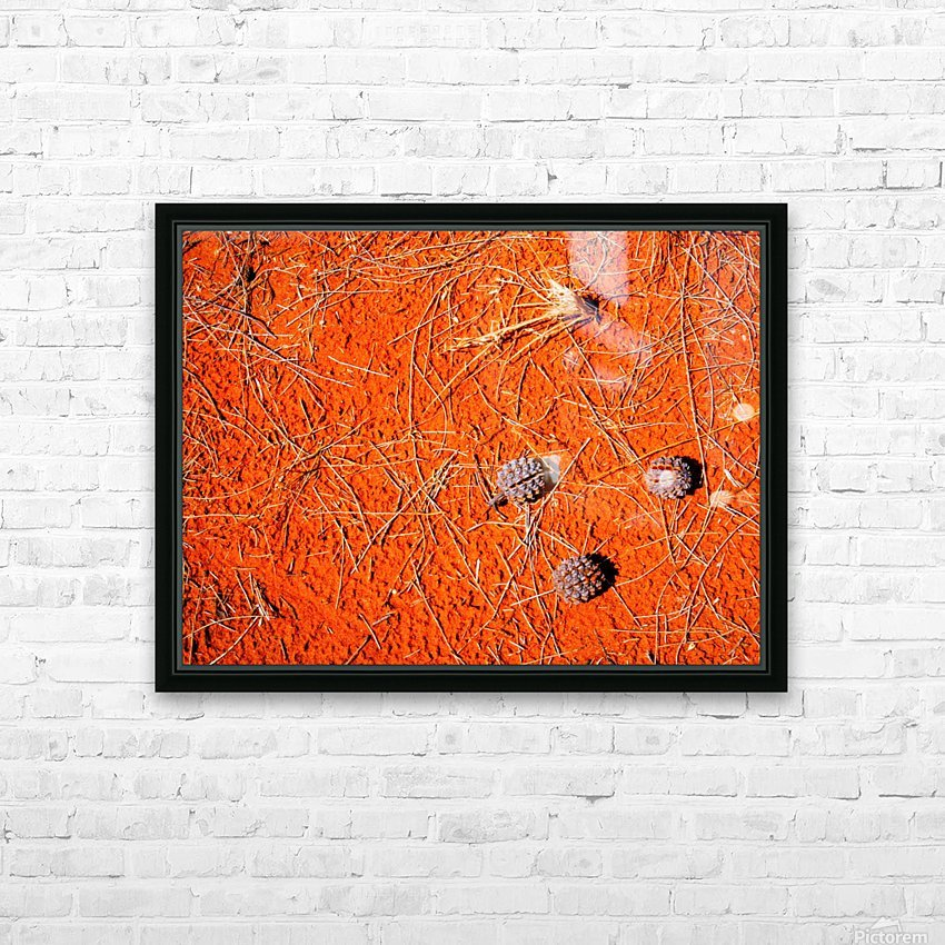 Seeds of the Desert HD Sublimation Metal print with Decorating Float Frame (BOX)