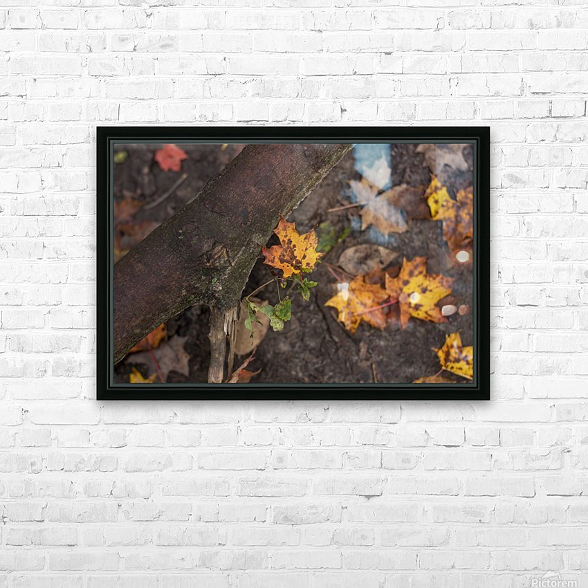 Fallen Leaves HD Sublimation Metal print with Decorating Float Frame (BOX)