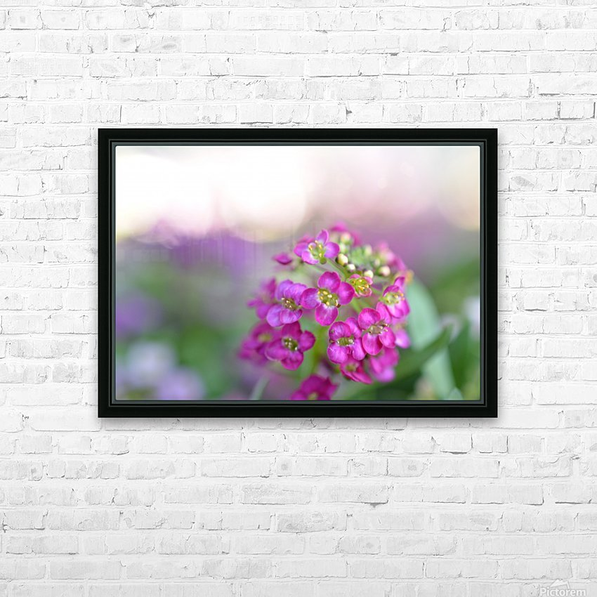 Pink Flowers Soft Photography HD Sublimation Metal print with Decorating Float Frame (BOX)