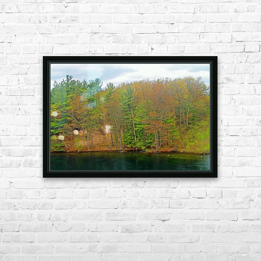 Lively Trees HD Sublimation Metal print with Decorating Float Frame (BOX)