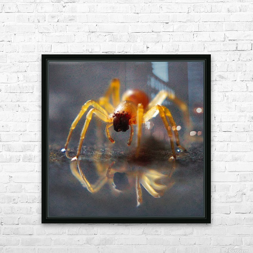 Spider reflecting HD Sublimation Metal print with Decorating Float Frame (BOX)