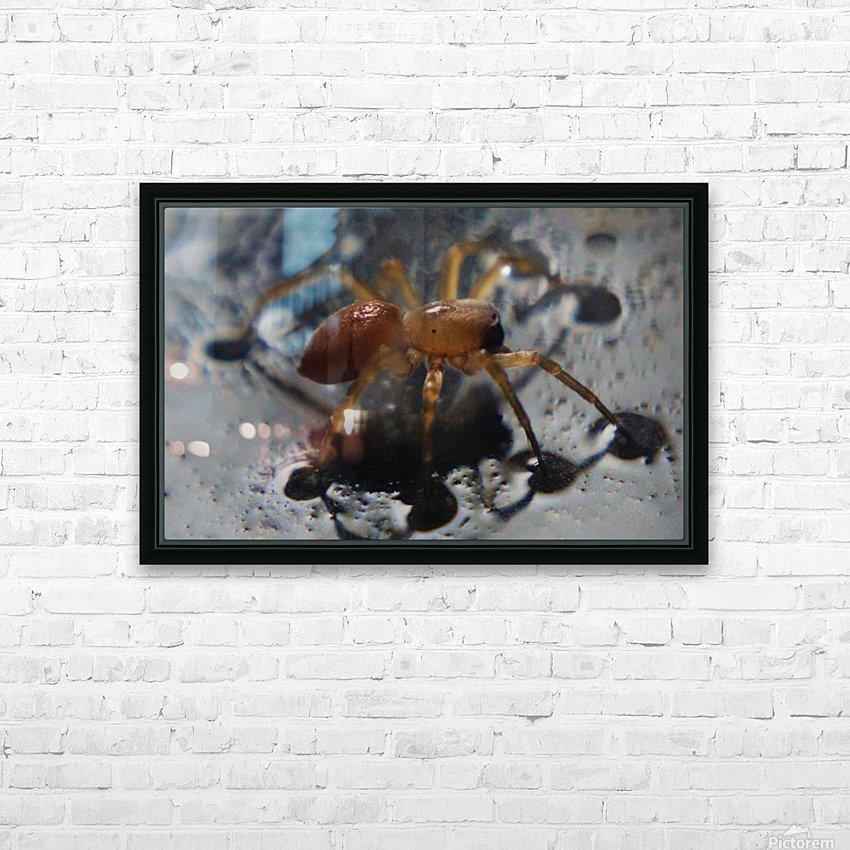 Spider treading water HD sublimation métal imprimé avec décoration flotteur cadre (boîte)