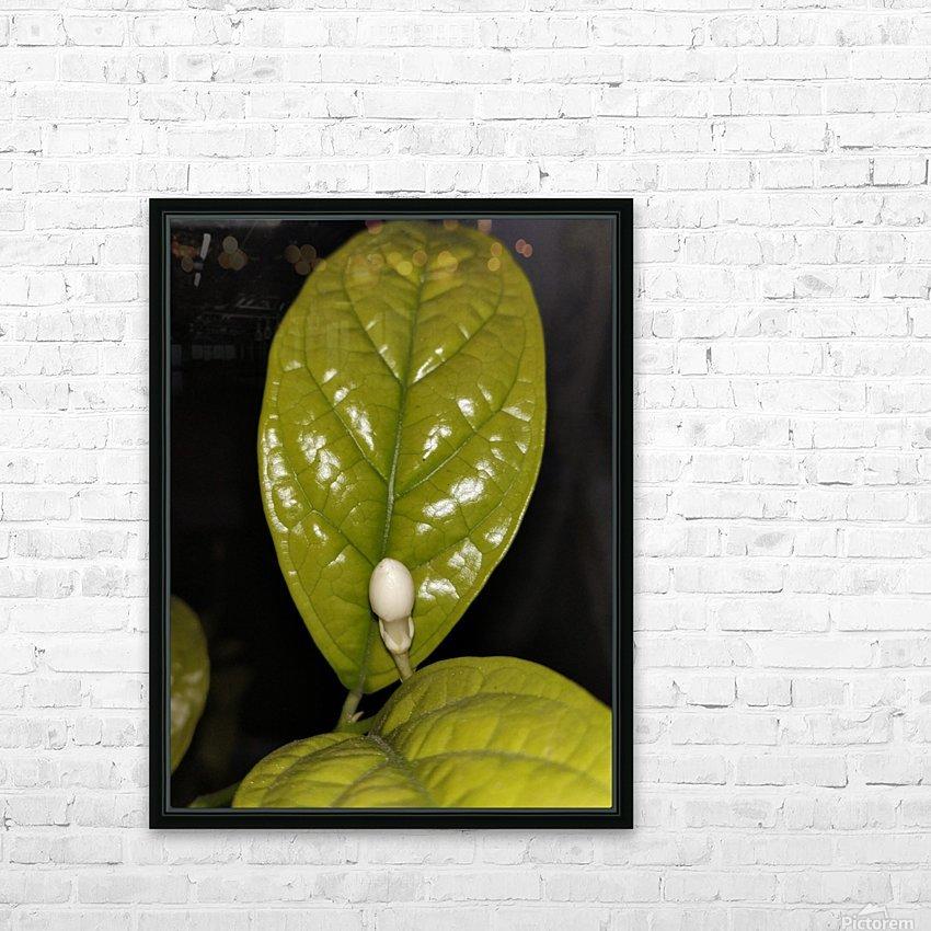 Jasmine Flower Fragrance HD Sublimation Metal print with Decorating Float Frame (BOX)