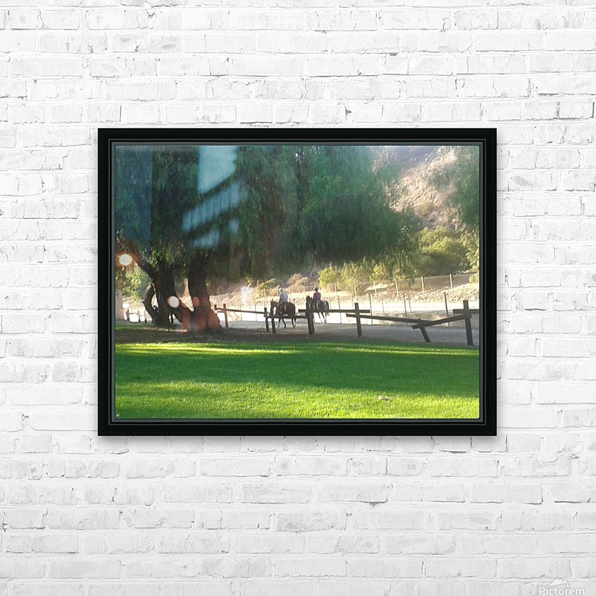 Horses at the park summertime  HD Sublimation Metal print with Decorating Float Frame (BOX)