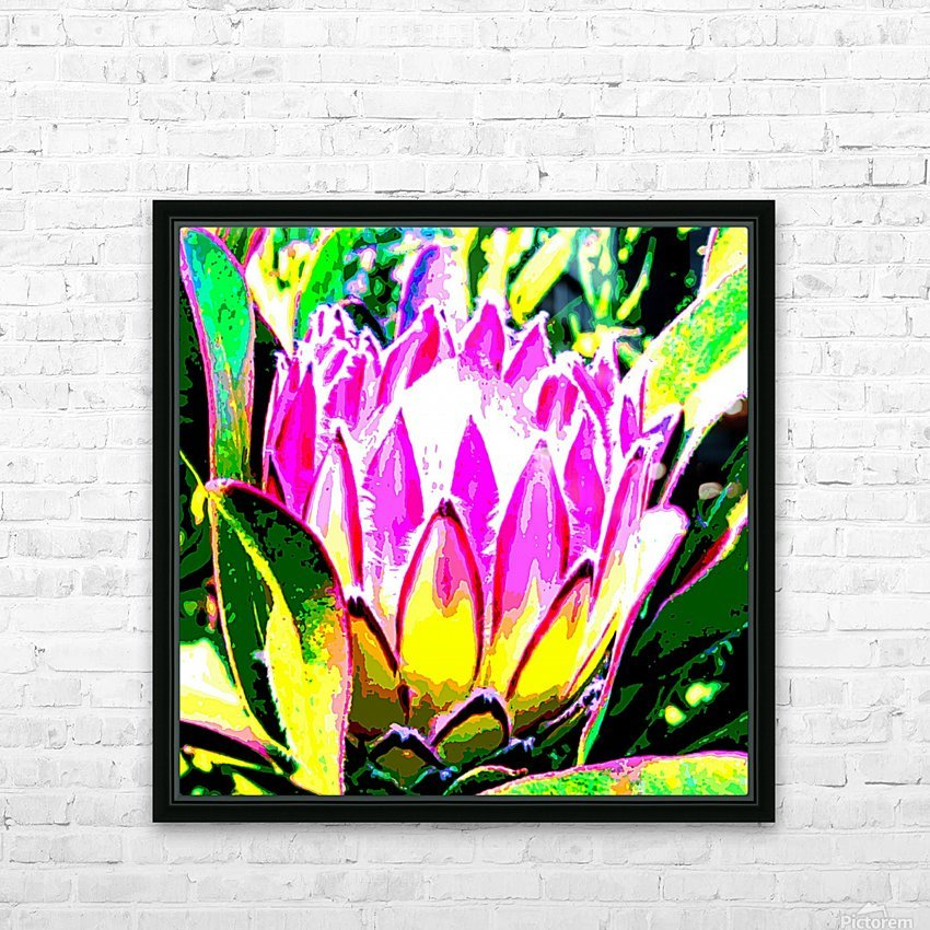 pink protea HD Sublimation Metal print with Decorating Float Frame (BOX)