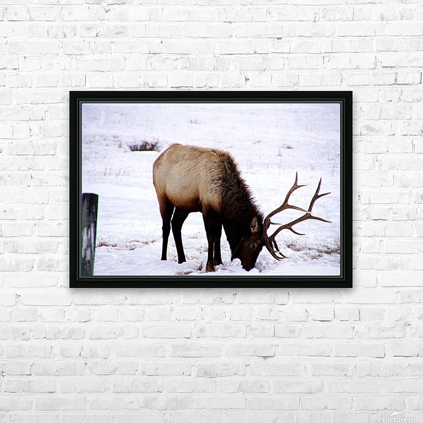 Wheres The Grass HD Sublimation Metal print with Decorating Float Frame (BOX)