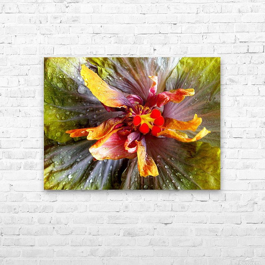 The Multicolored You HD Sublimation Metal print with Decorating Float Frame (BOX)
