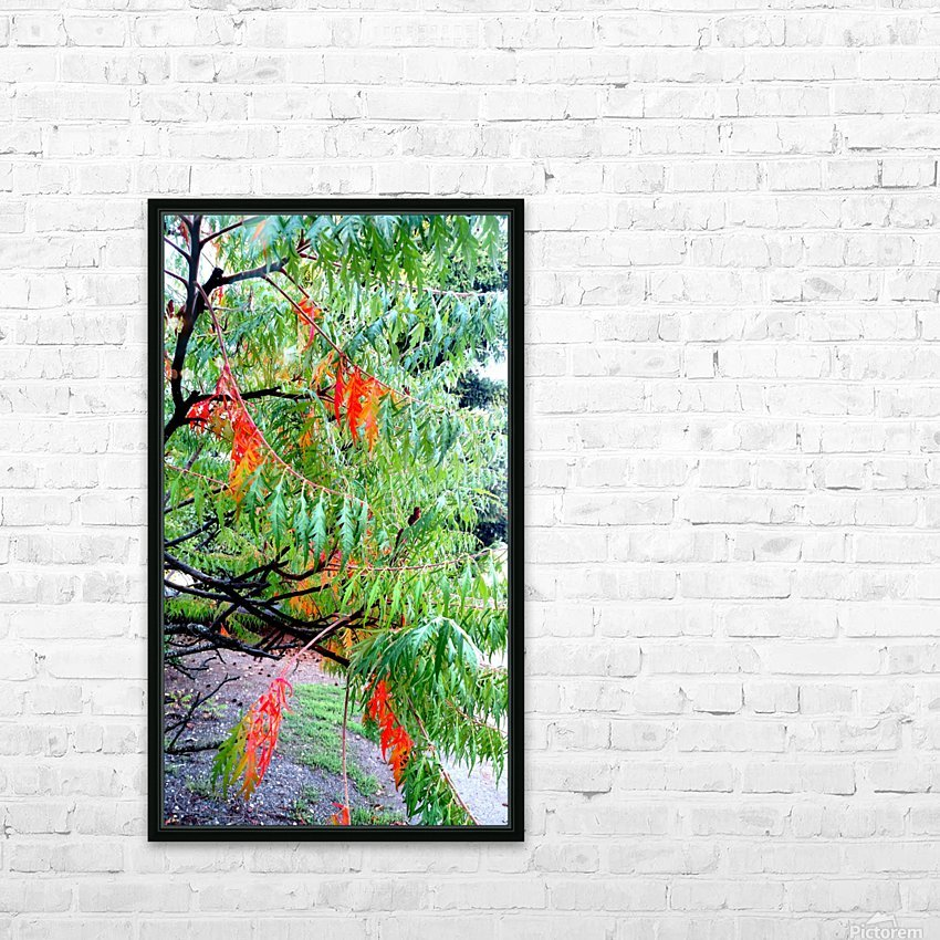 Rasta Leaves HD Sublimation Metal print with Decorating Float Frame (BOX)