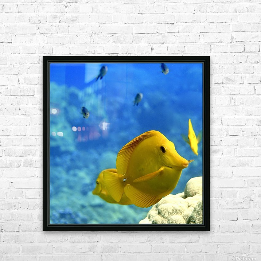 Yellow  a yellow tang  HD Sublimation Metal print with Decorating Float Frame (BOX)