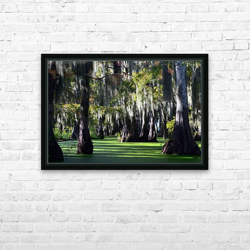 Swampy HD Sublimation Metal print with Decorating Float Frame (BOX)