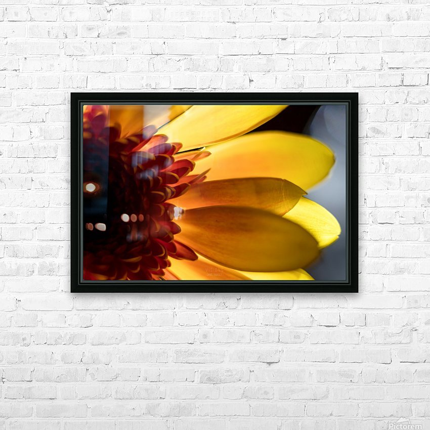 Jaune 3 HD Sublimation Metal print with Decorating Float Frame (BOX)