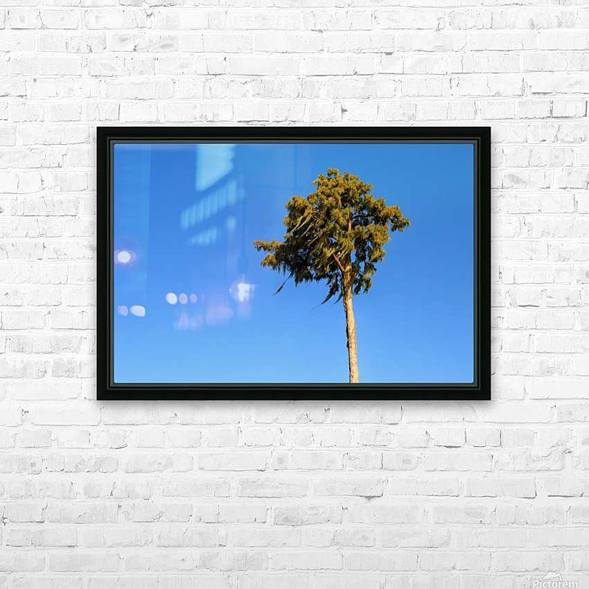 Windy  HD Sublimation Metal print with Decorating Float Frame (BOX)