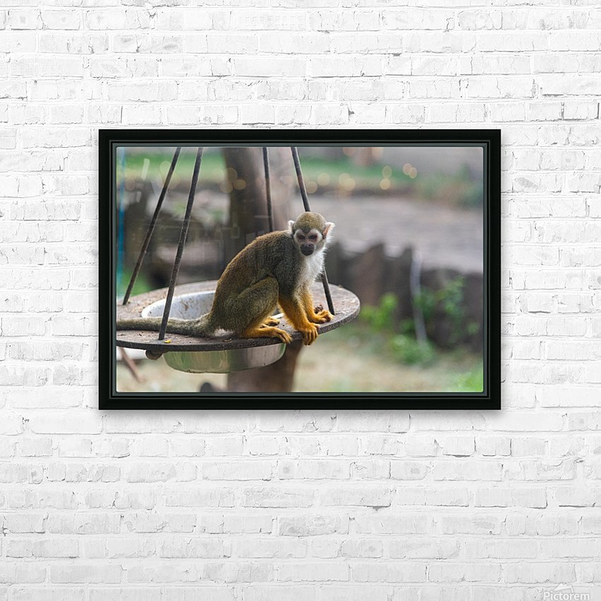 A Snack HD Sublimation Metal print with Decorating Float Frame (BOX)