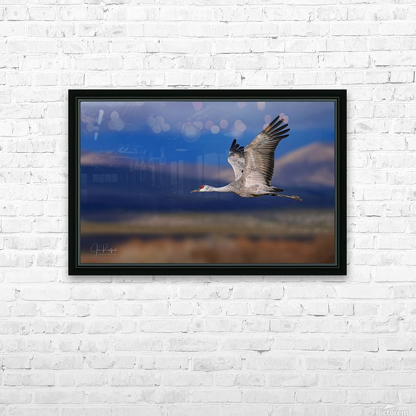 Crane over the Bosque HD Sublimation Metal print with Decorating Float Frame (BOX)