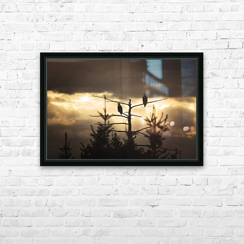 Seeing Double HD Sublimation Metal print with Decorating Float Frame (BOX)