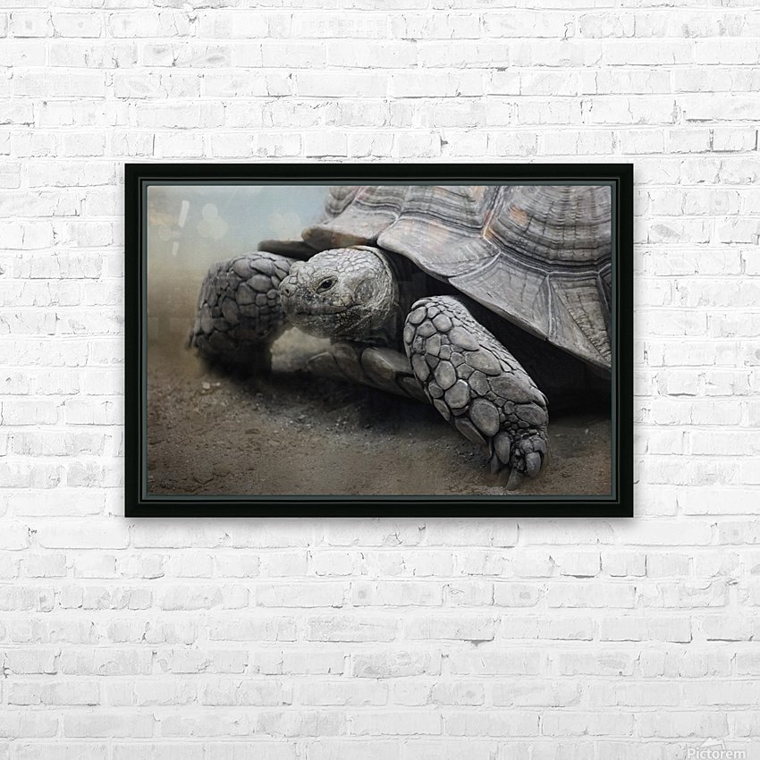 Galapagos Gentle Giant  HD Sublimation Metal print with Decorating Float Frame (BOX)