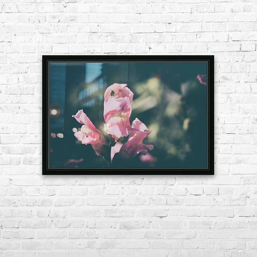 Lupinus Luteus Pink HD Sublimation Metal print with Decorating Float Frame (BOX)