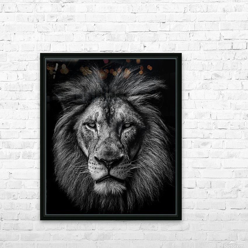 A Lion in Black & White HD Sublimation Metal print with Decorating Float Frame (BOX)