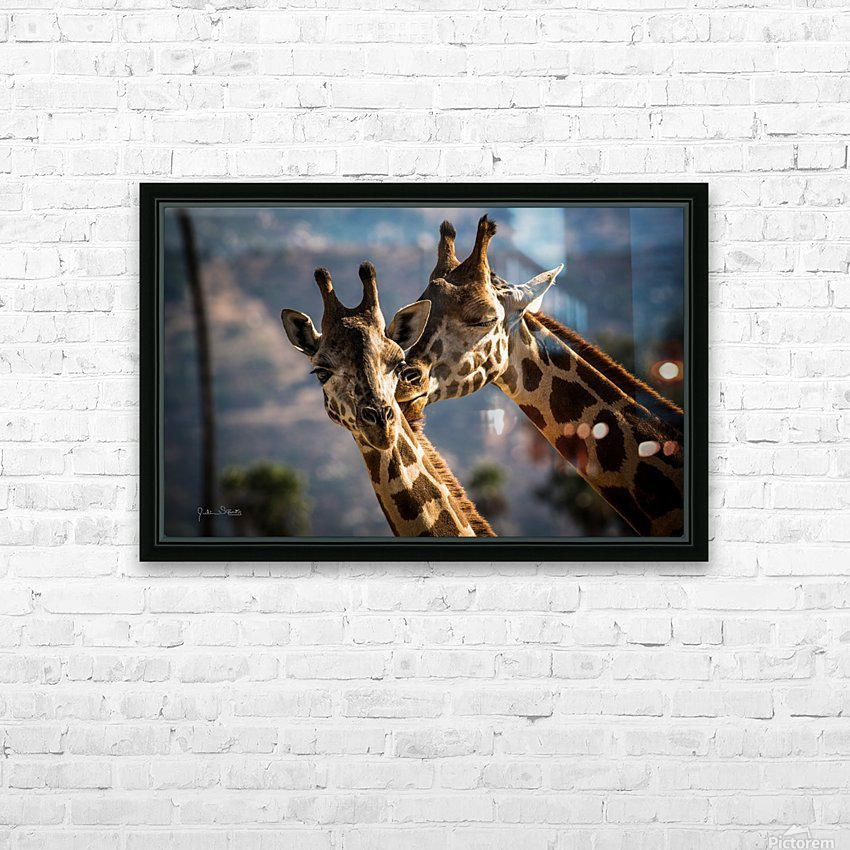 Loving Giraffes HD Sublimation Metal print with Decorating Float Frame (BOX)