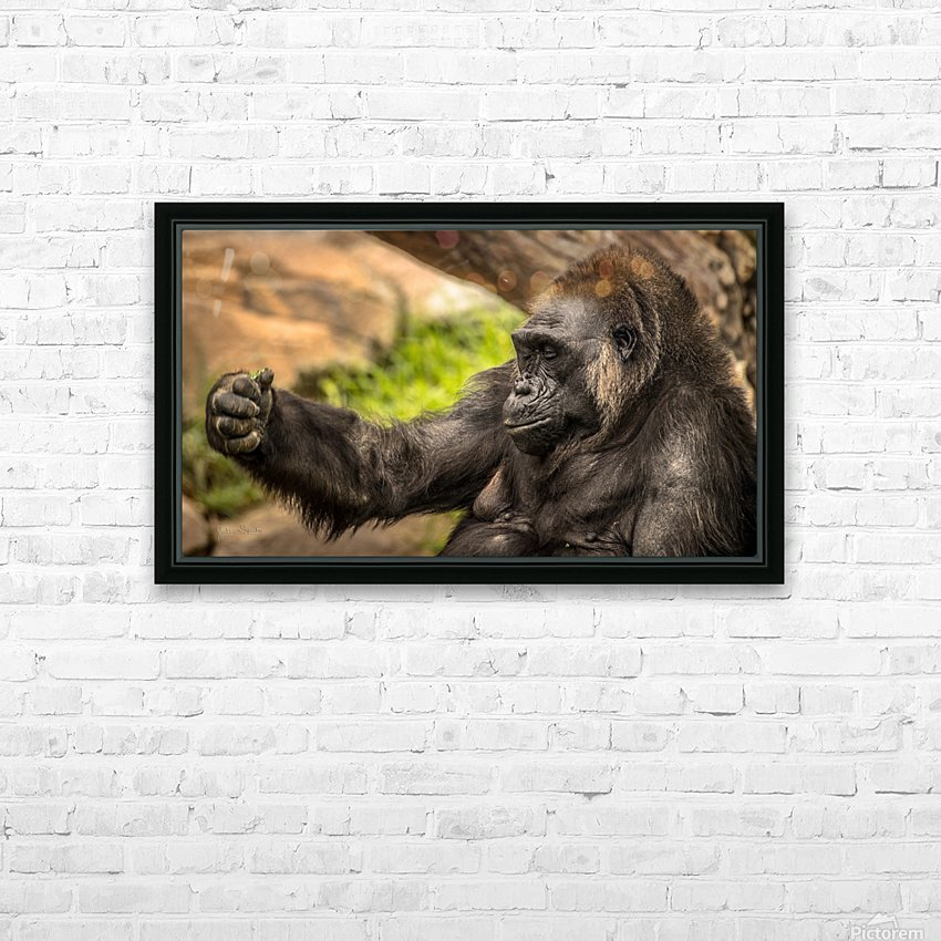 Quiet Gorilla Sleeping HD Sublimation Metal print with Decorating Float Frame (BOX)