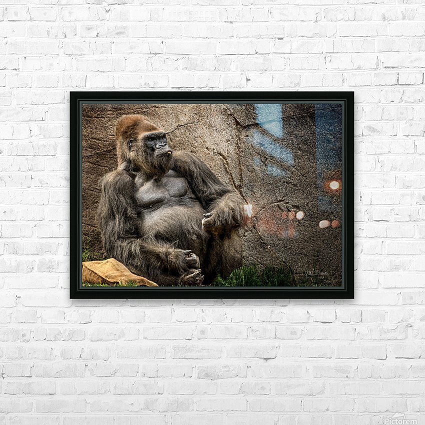 Big Daddy Silverback Gorilla HD Sublimation Metal print with Decorating Float Frame (BOX)