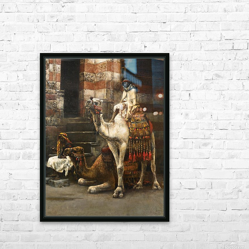 Camels on Cairo street HD Sublimation Metal print with Decorating Float Frame (BOX)