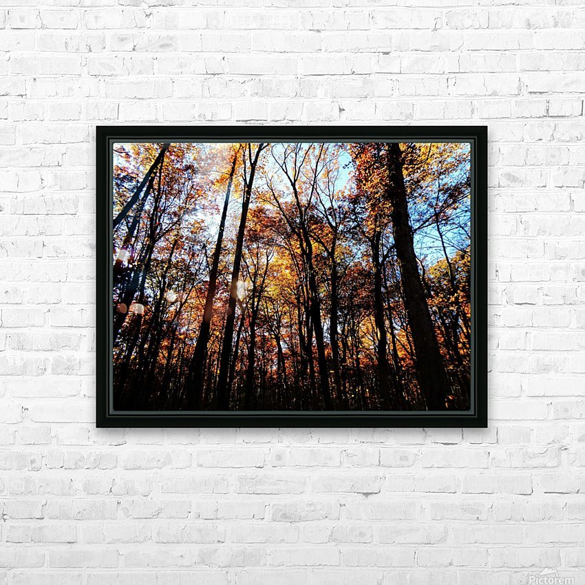 Golden Autumn HD Sublimation Metal print with Decorating Float Frame (BOX)