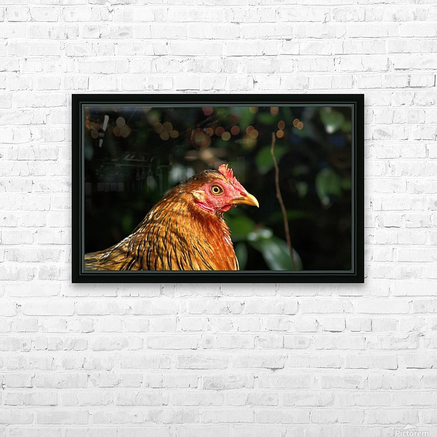 You Turkey HD Sublimation Metal print with Decorating Float Frame (BOX)