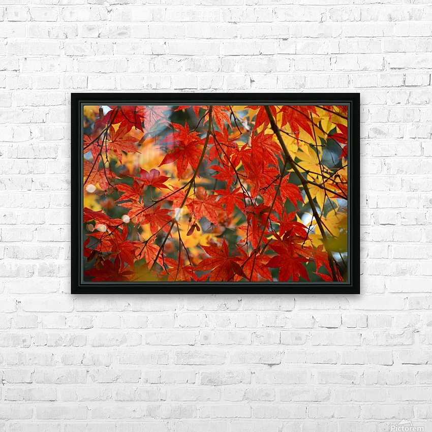 Fall Foliage Photography  HD Sublimation Metal print with Decorating Float Frame (BOX)