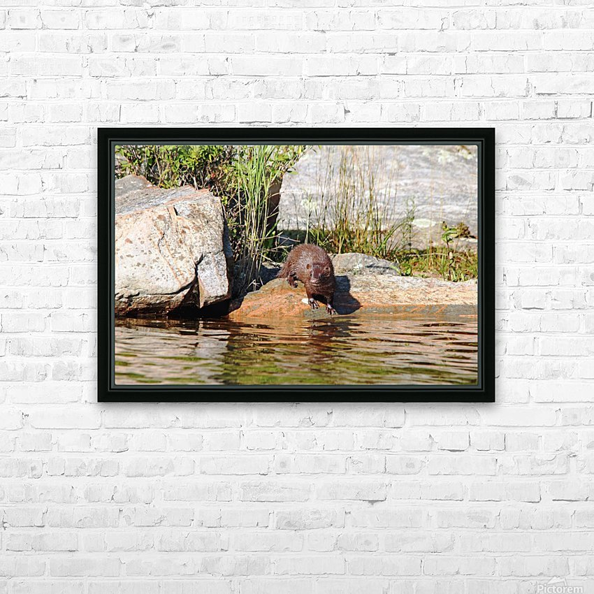 Curiousity HD Sublimation Metal print with Decorating Float Frame (BOX)