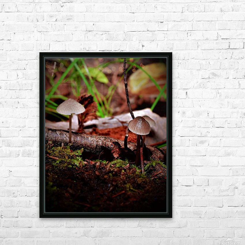 Cueillette sauvage HD Sublimation Metal print with Decorating Float Frame (BOX)